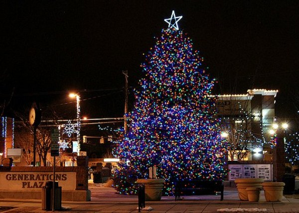 Permits To Cut Your Own Christmas Tree On Sale Soon
